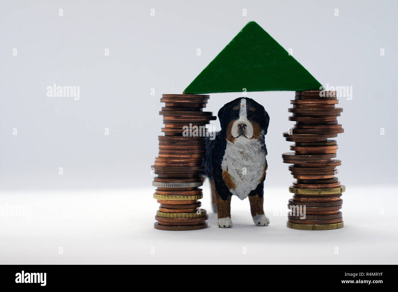 dog in own house based on stack of coins - Stock Image
