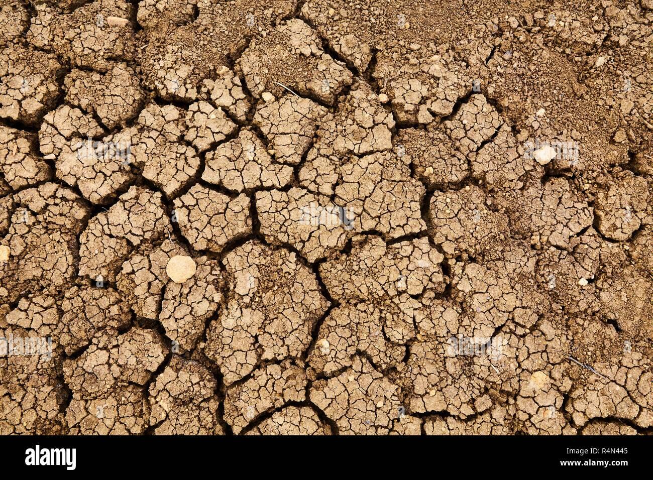 Dry Soil Texture - Stock Image
