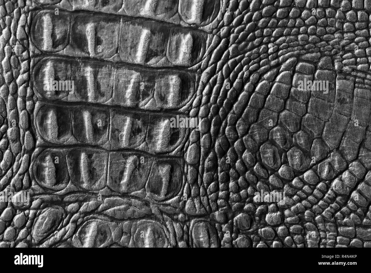 Genuine leather texture backgroundr close-up, embossed under the skin a reptile, black color print. Natural backdrop. Concept of shopping, manufacturing - Stock Image