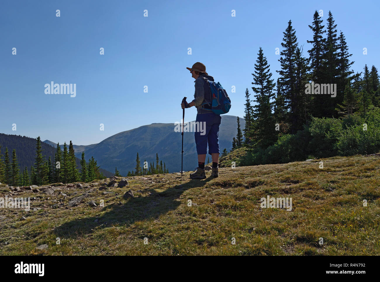 Woman hiking on Silver Dollar Trail in Colorado Stock Photo