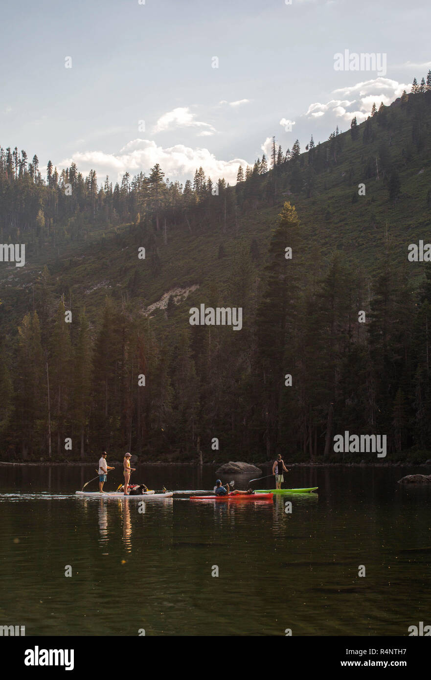 Distant view of group of people paddle boarding in lake, Shasta, California, USA - Stock Image