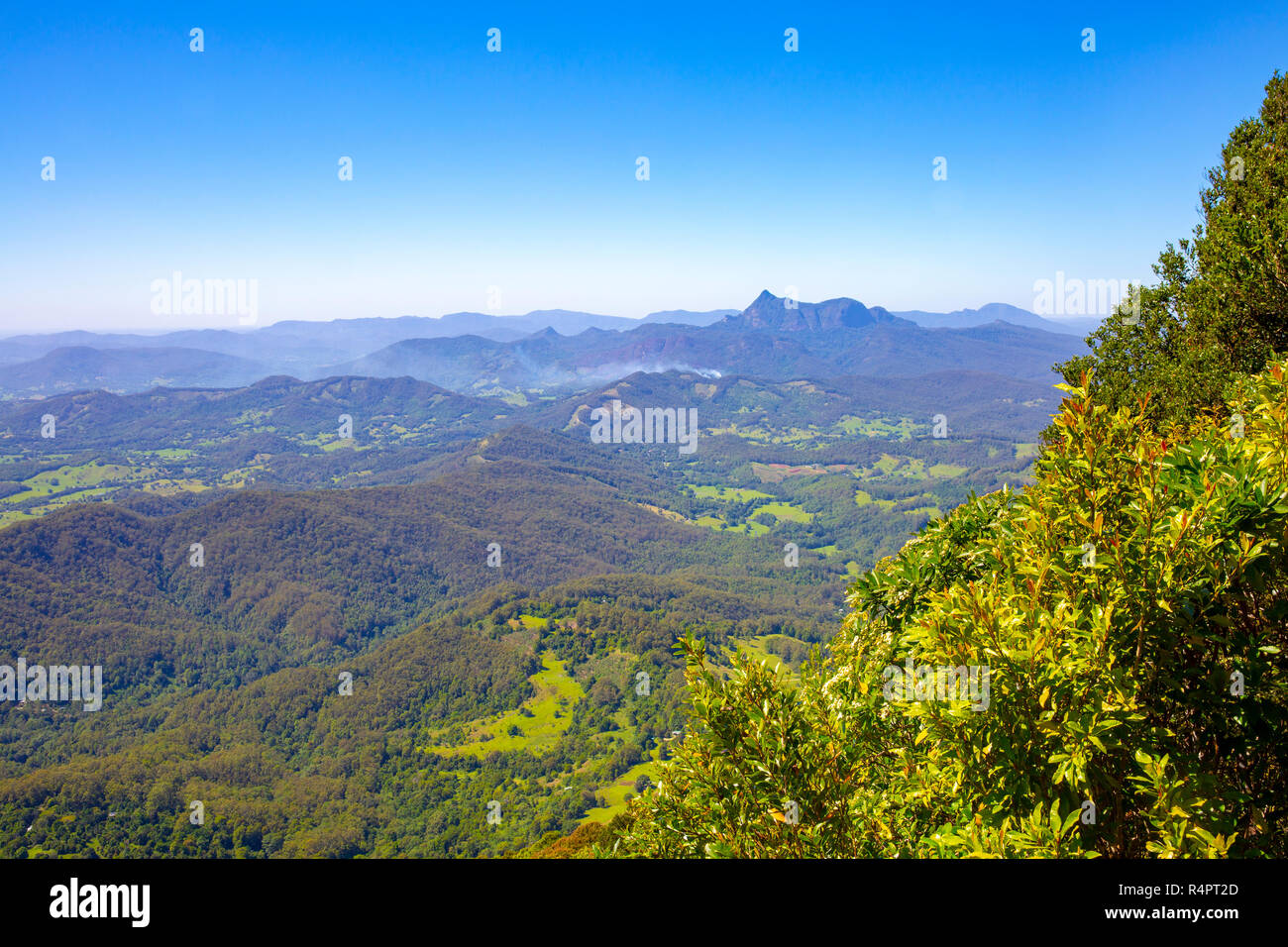 Countryside and nature of Springbrook national park in the Gold coast hinterland,Queensland,Australia - Stock Image
