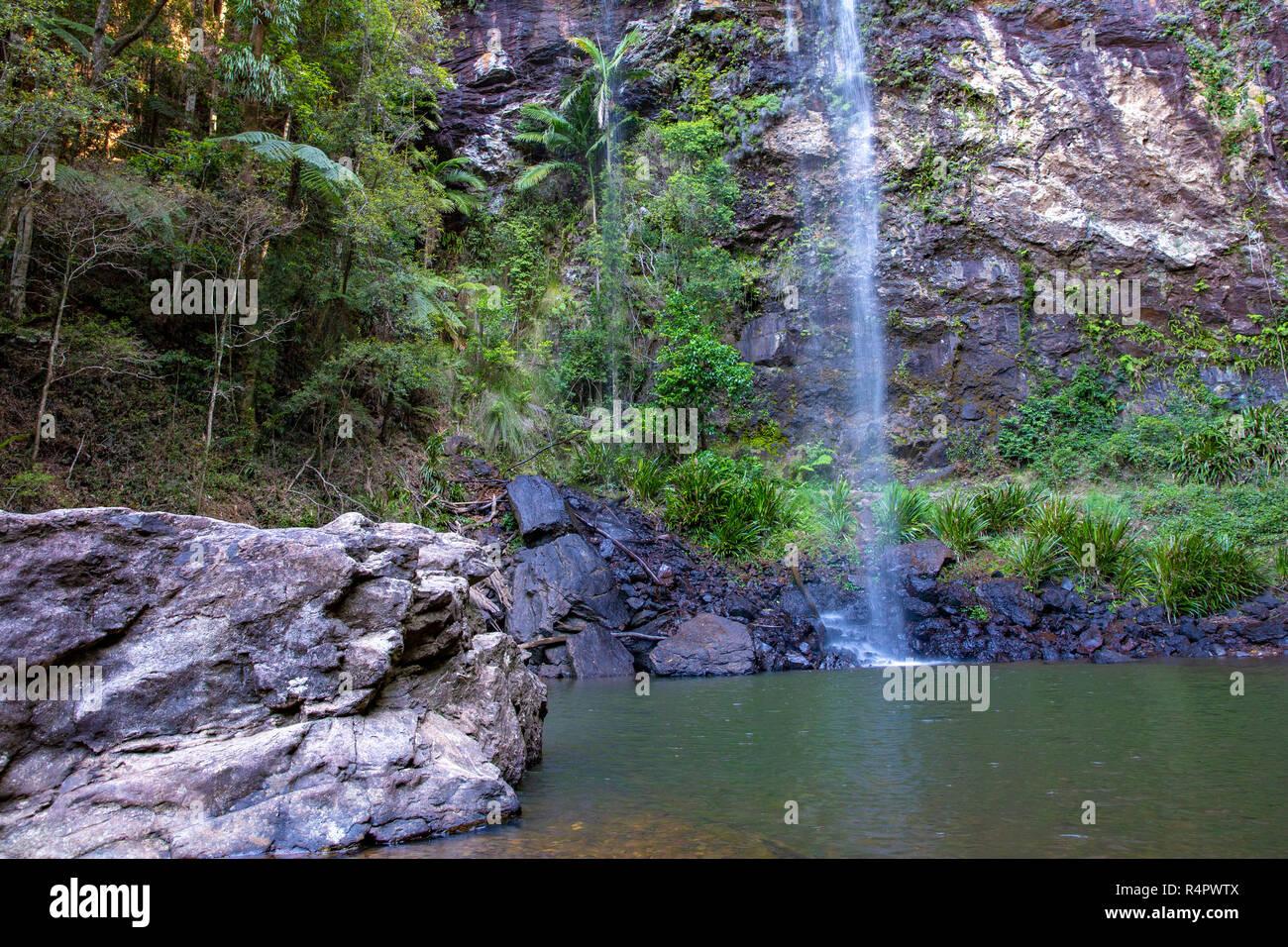 Twin falls circuit and waterfall in Springbrook national