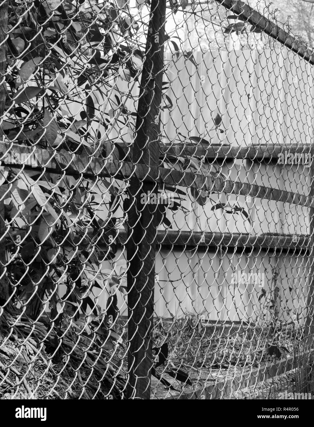 BLACK AND WHITE PHOTO OF CHAIN-LINK FENCE - Stock Image