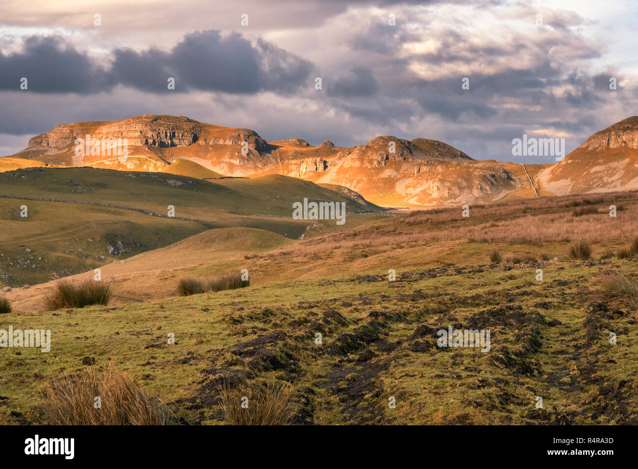Close to Settle is the dramatic limestone crags of Attermire Scar. The white rock contrasts strongly with the surrounding vivid green grassland. - Stock Image