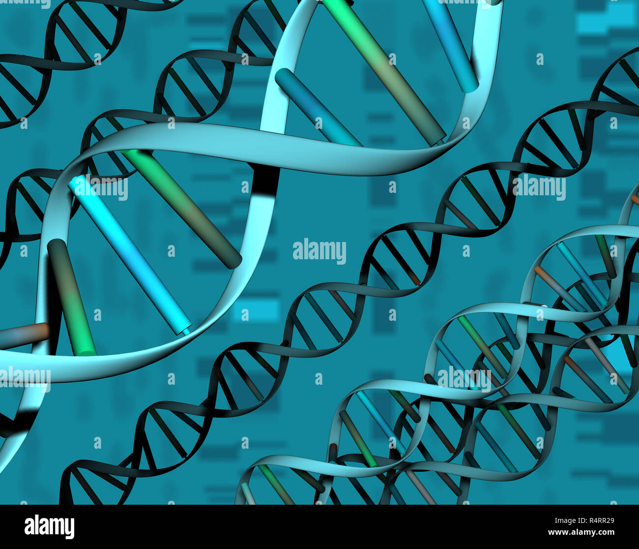 genetic material in the cell - Stock Image