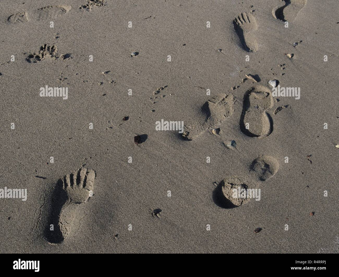Footprints in sandy beach, Spanish Banks Beach, Vancouver, British Columbia, Canada, Brian Martin RMSF, large file size - Stock Image