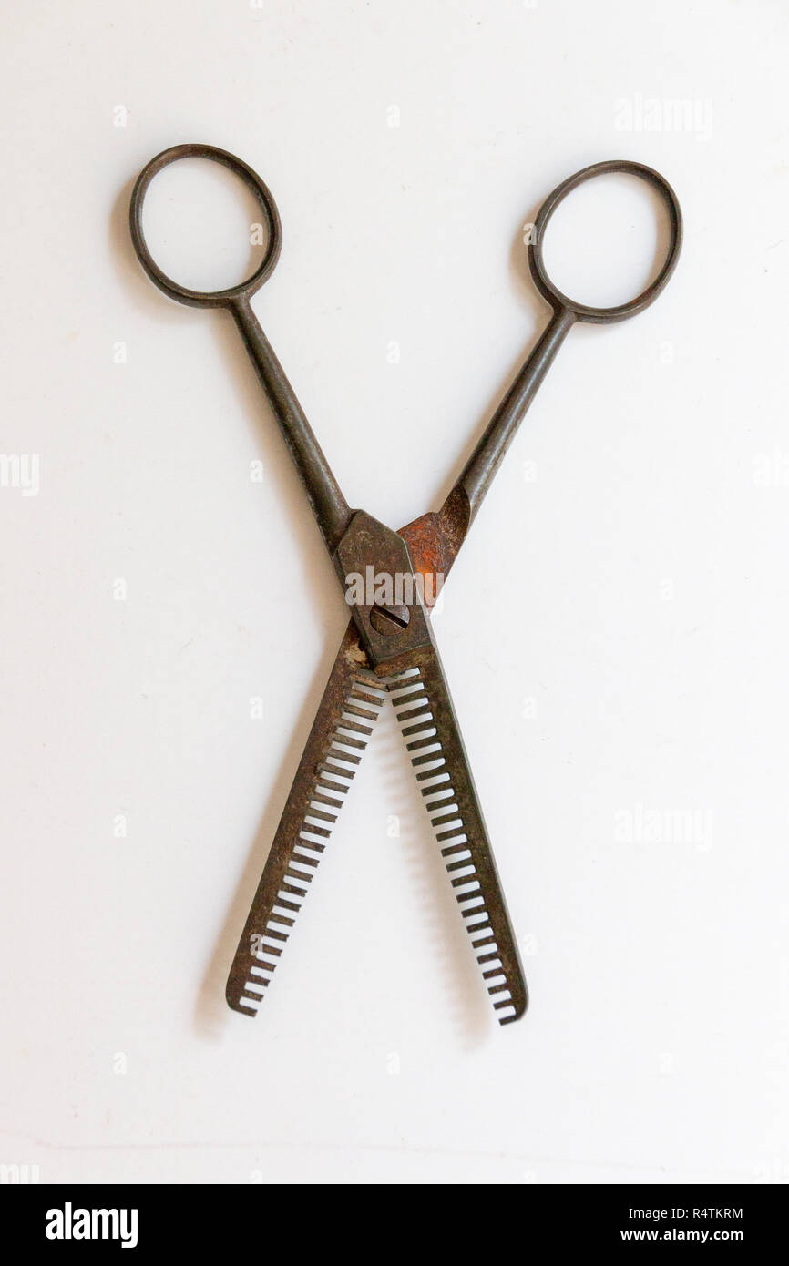 A Close up view of a very old and warn pair of hair dressers scissors on a isolated white background Stock Photo