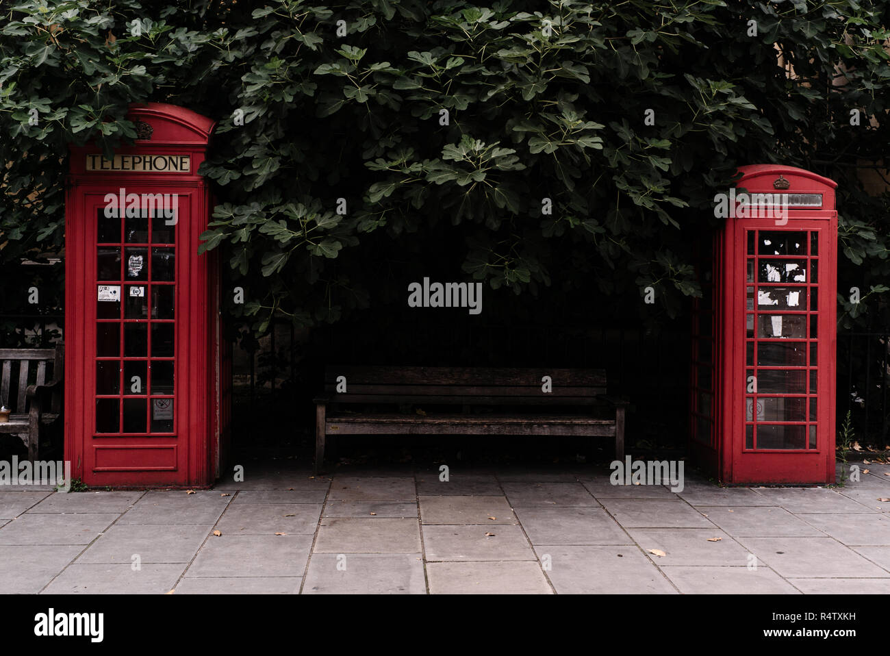 Two iconic red telephone boxes designed by Sir Giles Gilbert Scott, London, UK. - Stock Image