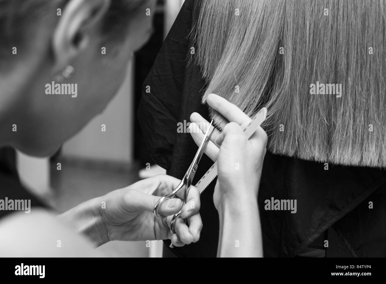 the Barber cuts the hair of a client at the beauty salon close-up. Stock Photo