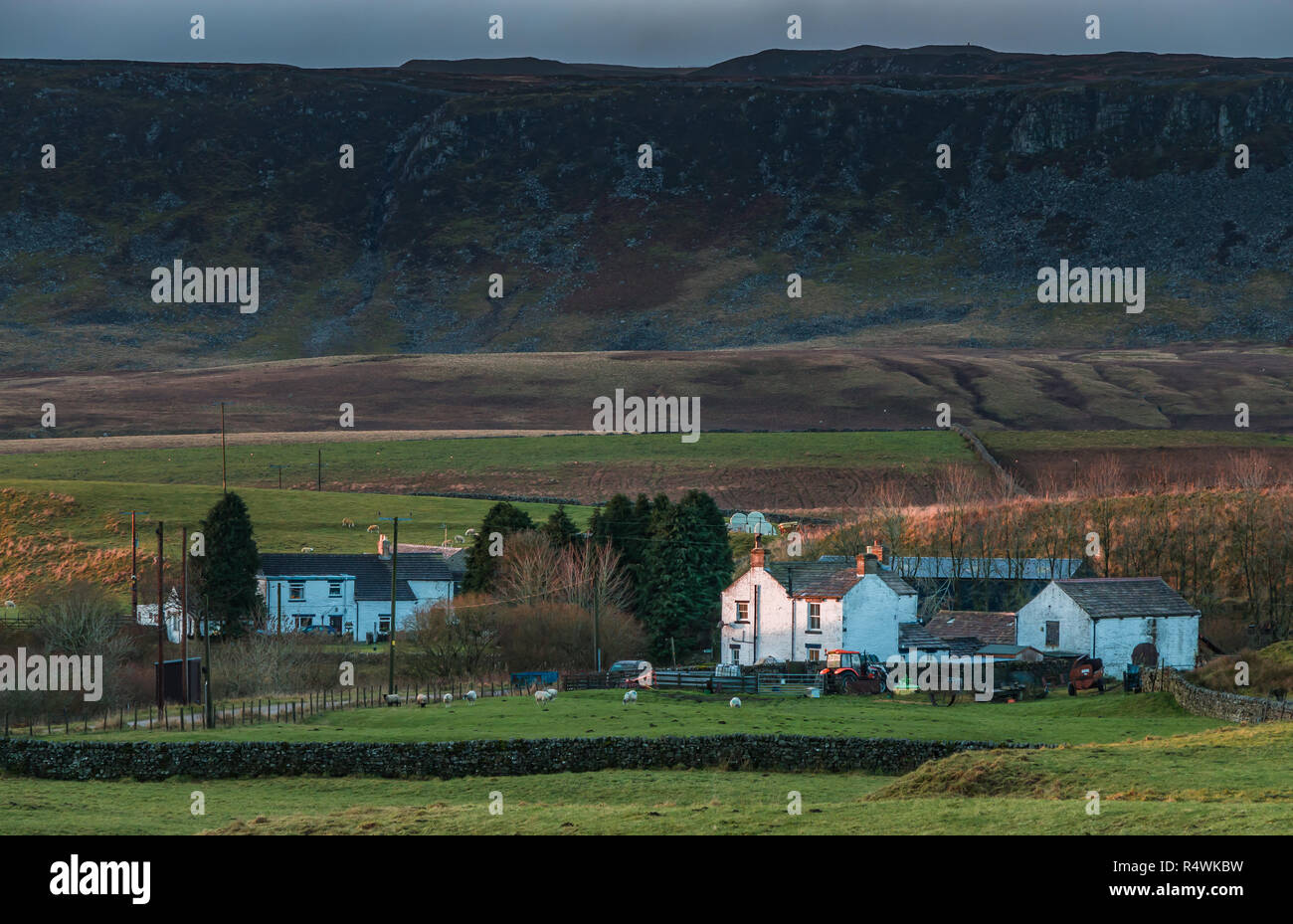 North Pennines AONB landscape, the remote farming hamlet of Langdon Beck, Upper Teesdale, UK in early morning sunlight and a dark sky background Stock Photo