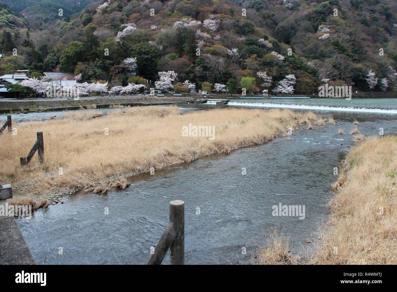 The river Hozu-gawa in Kyoto (Japan). - Stock Image