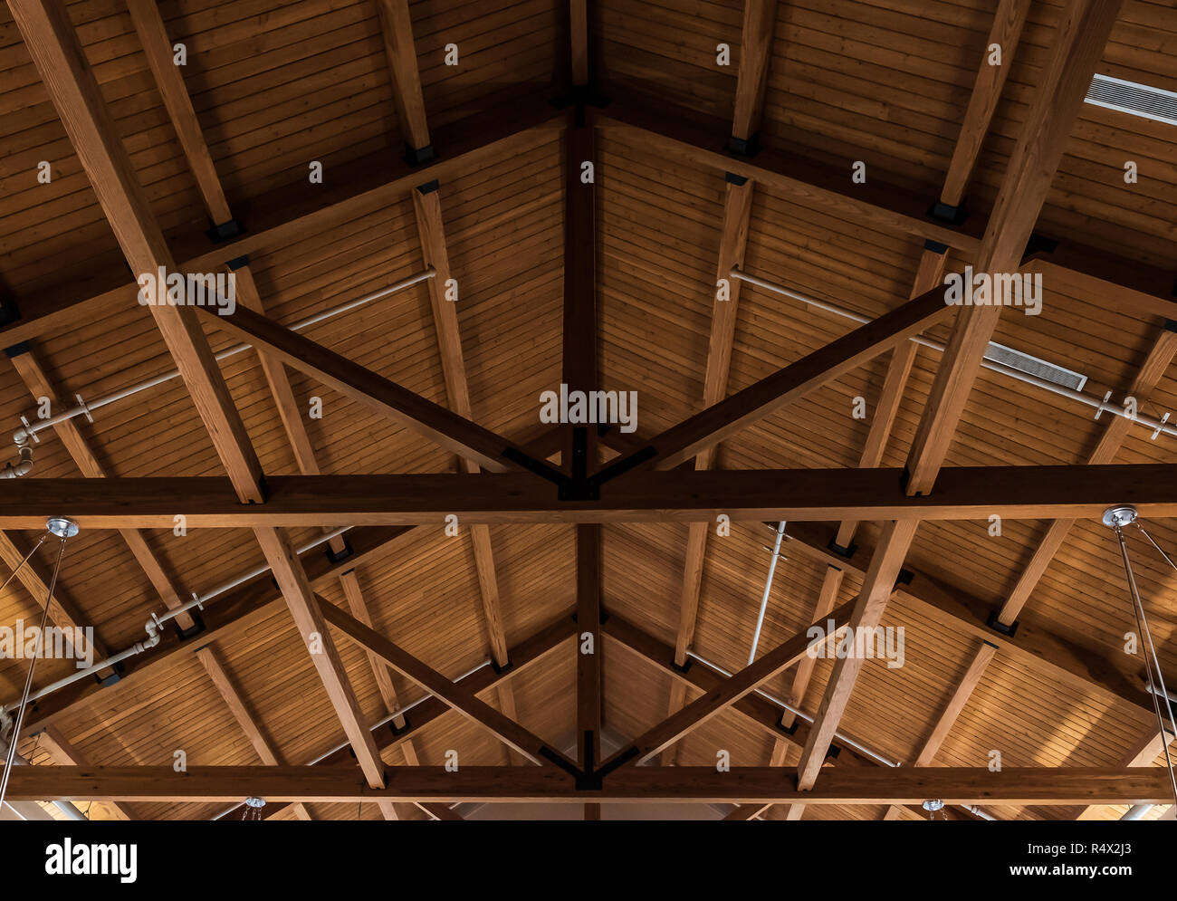Underside of shed roof, showing trusses and plank roofing