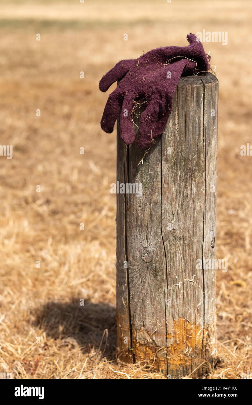 single lost glove on post during hot summer - Stock Image