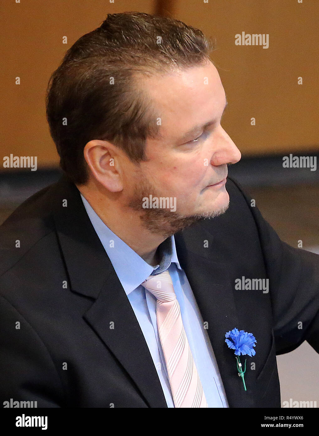 29 November 2018, Berlin: With a blue cornflower on his lapel, Andreas Wild (AfD), factionless, follows Question Time in the House of Representatives. The parliamentary president asked the deputy several times to remove the flower. From 1933 to 1938, the cornflower was a hallmark in Austria of the National Socialists who were banned at the time. Photo: Wolfgang Kumm/dpa - Stock Image