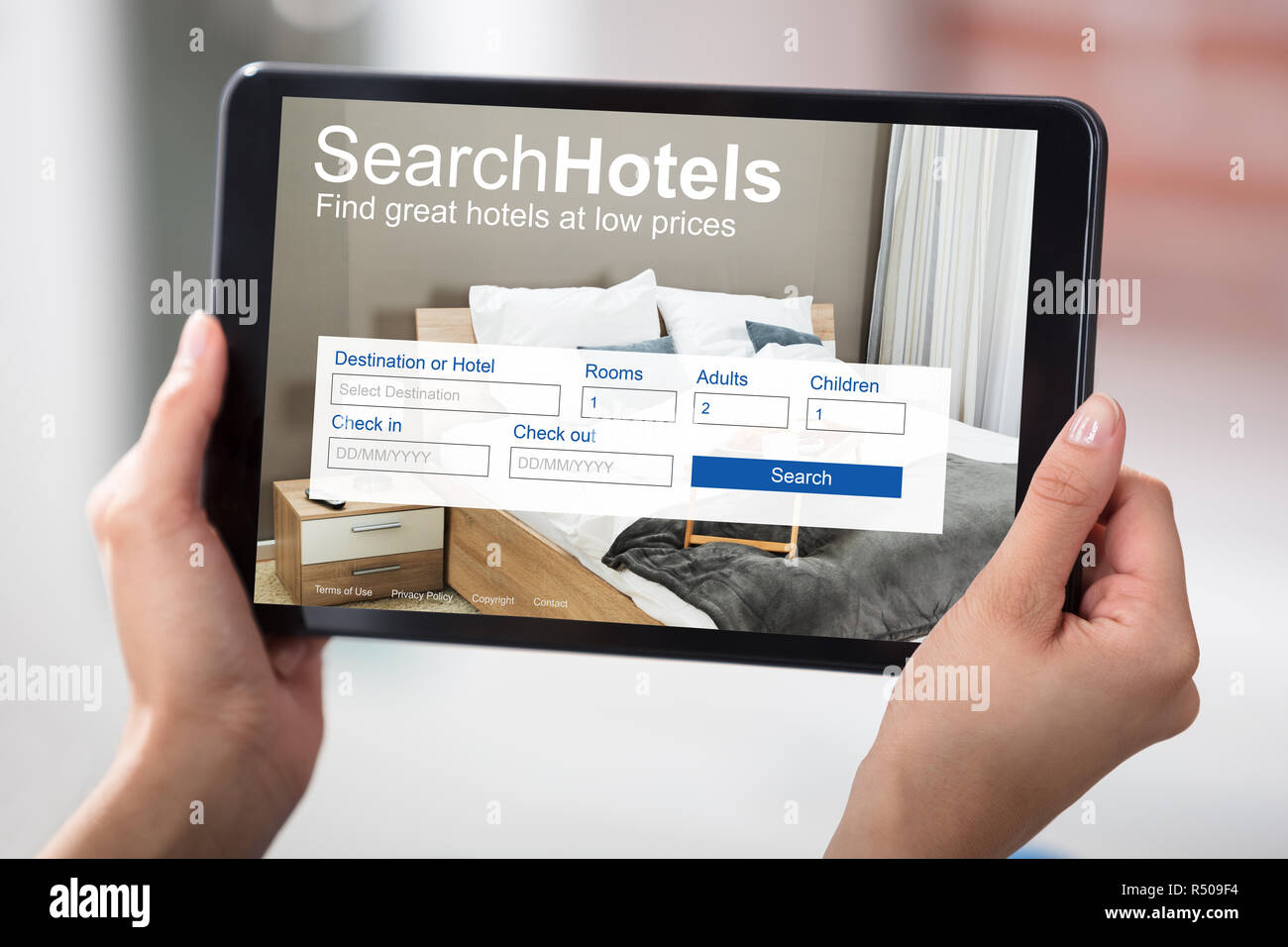 Woman Searching Online Low Priced Hotels - Stock Image