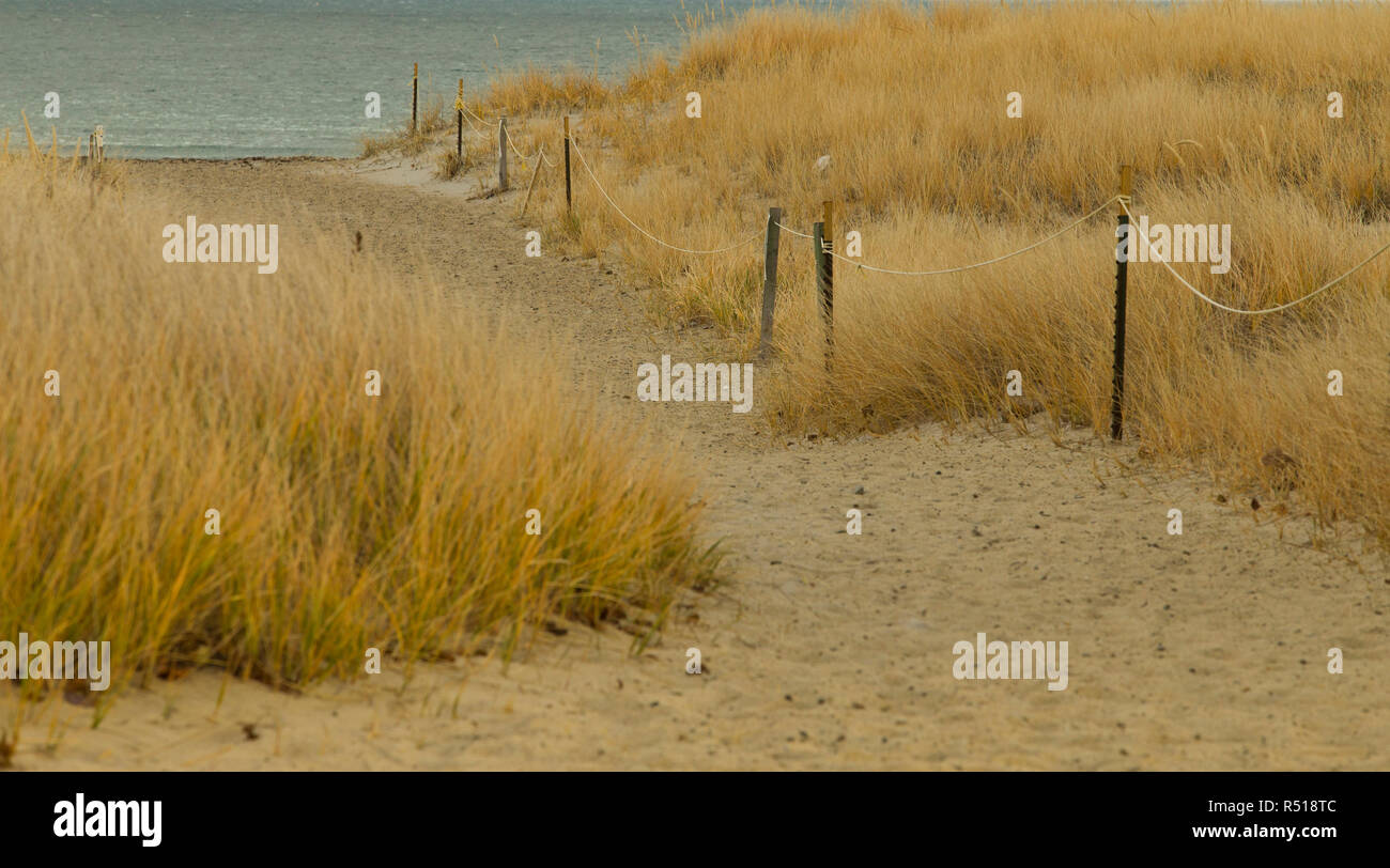 Golden Dunes Hampton NH. Great state park just south of downtown Hampton Beach, New Hampshire. Arrive early if you want a prime spot on the sandy beac. - Stock Image