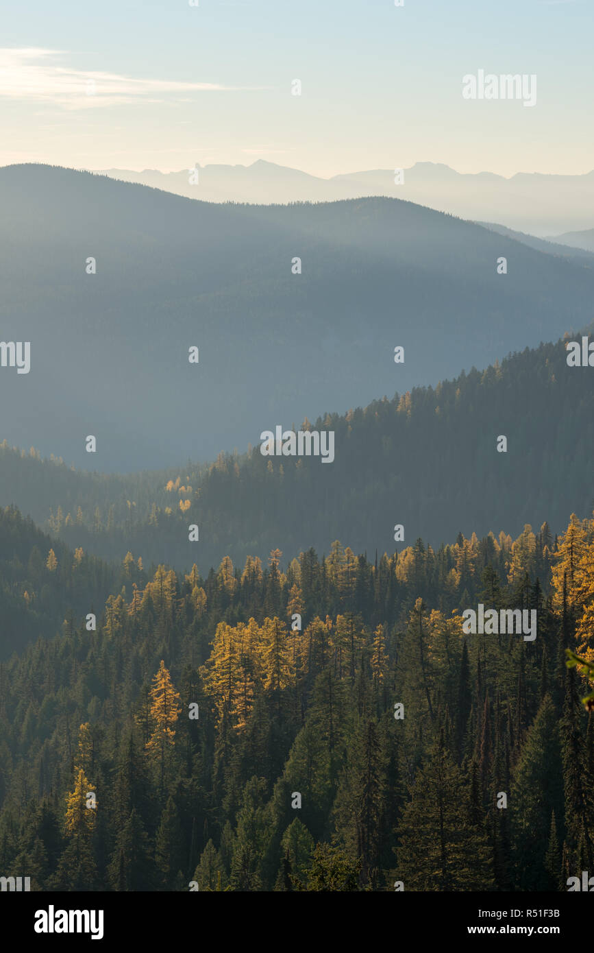 Selkirk Mountains, Idaho. - Stock Image
