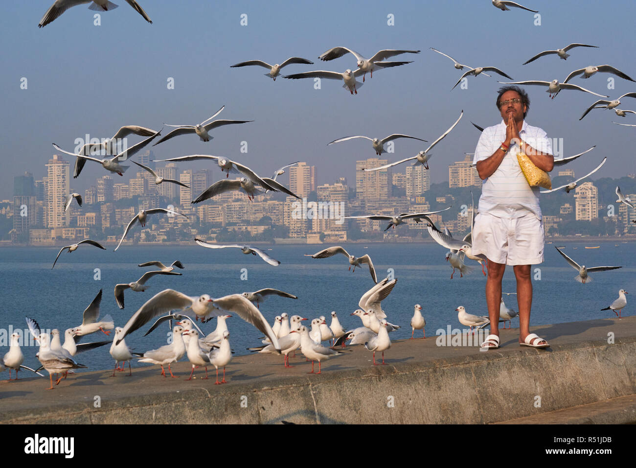 A Hindu praying towards the sun at Marine Drive, a seaside boulevard lining the Arabian Sea in Mumbai, India, surrounded by migratory seagulls Stock Photo
