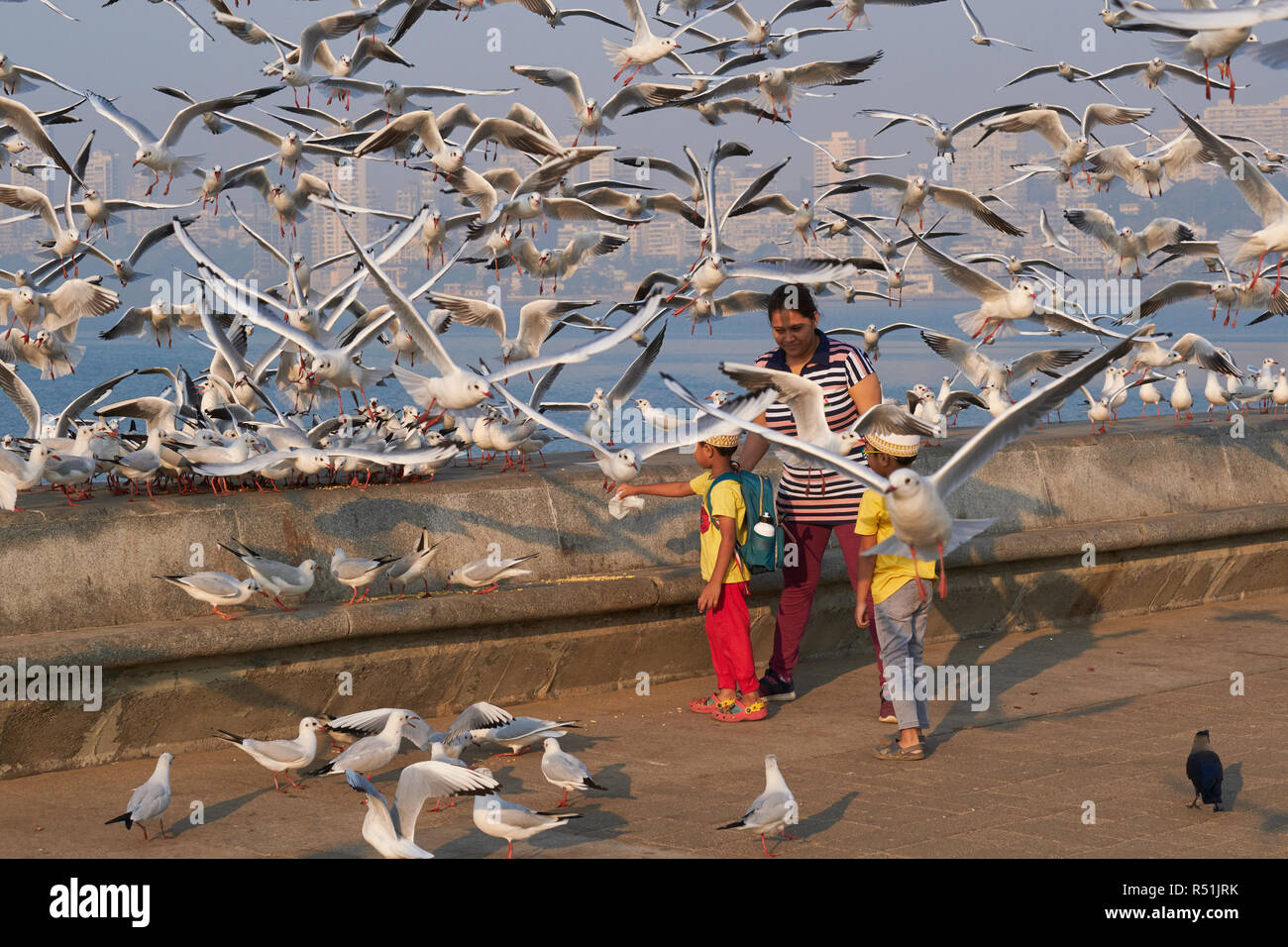 Two young boys and a relative at Marine Drive, a seaside boulevard along the Arabian Sea in Mumbai, India, surrounded by migratory seagulls - Stock Image
