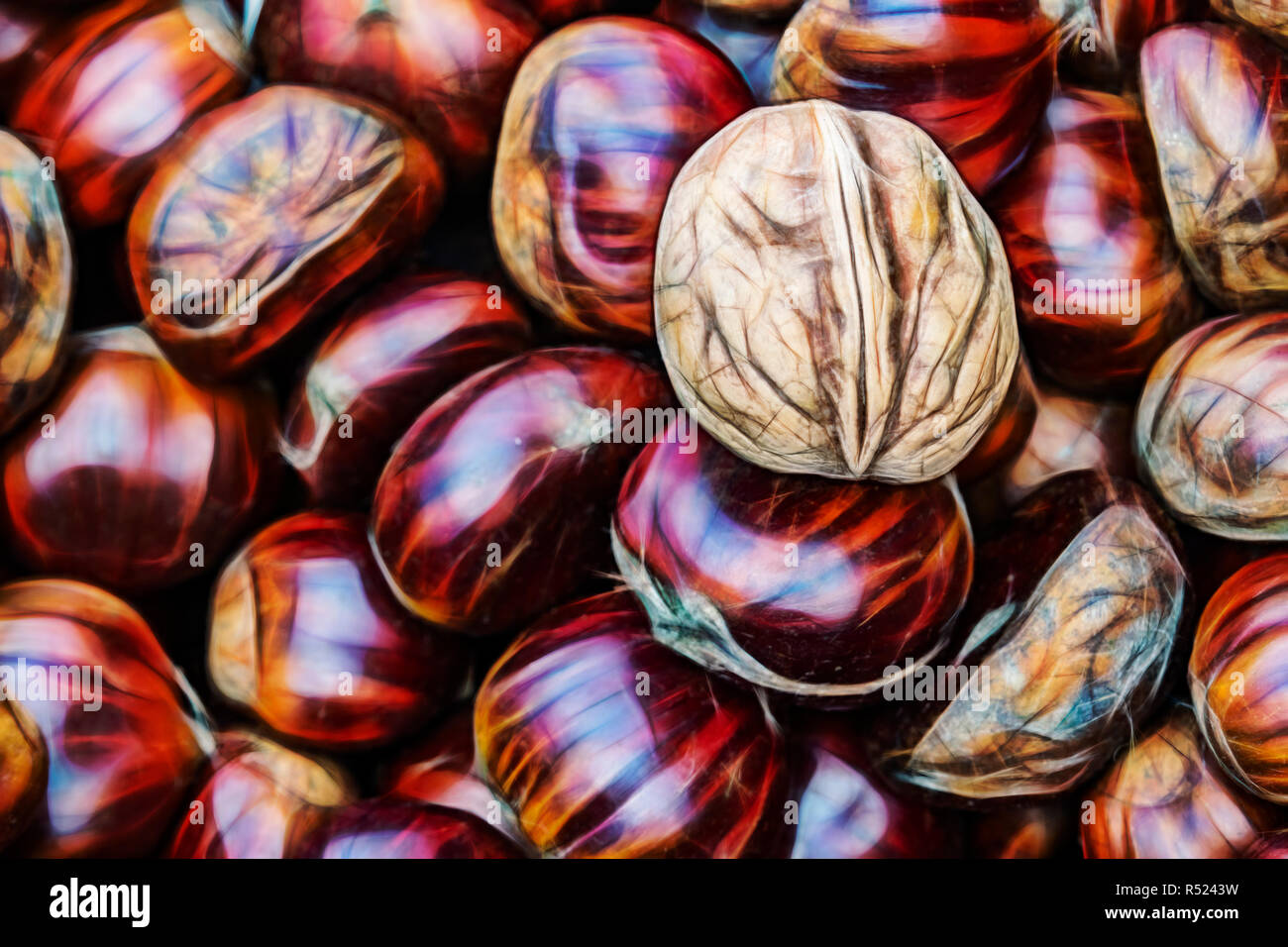 close up ready for sale shelled walnuts and chestnuts in greengrocer Stock Photo