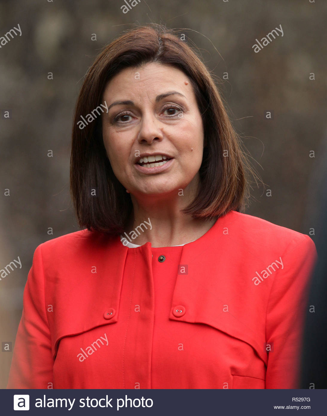 File photo dated 8/10/2013 of Jacqui Hames. Victims of 'serious media intrusion' will find out if they have succeeded in their High Court action over the second part of the Leveson Inquiry. - Stock Image