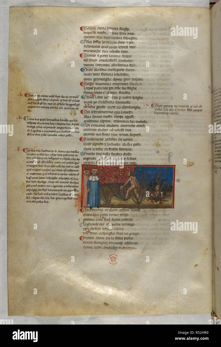 Inferno: They speak to suicides that have been turned into trees. Dante Alighieri, Divina Commedia ( The Divine Comedy ), with a commentary in Latin. 1st half of the 14th century. Source: Egerton 943, f.24v. Language: Italian, Latin. - Stock Image