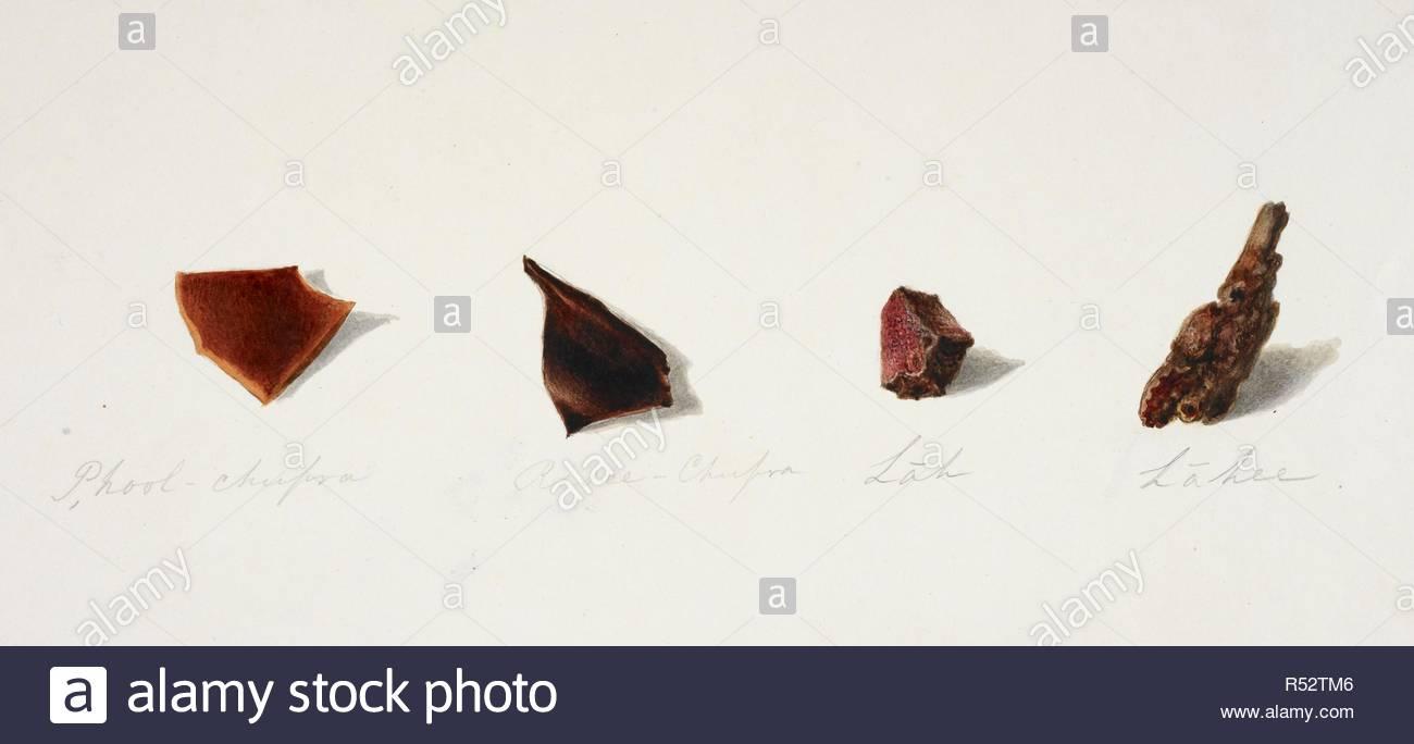 Studies Of Four Different Types Of Semi Precious Stones Inscribed