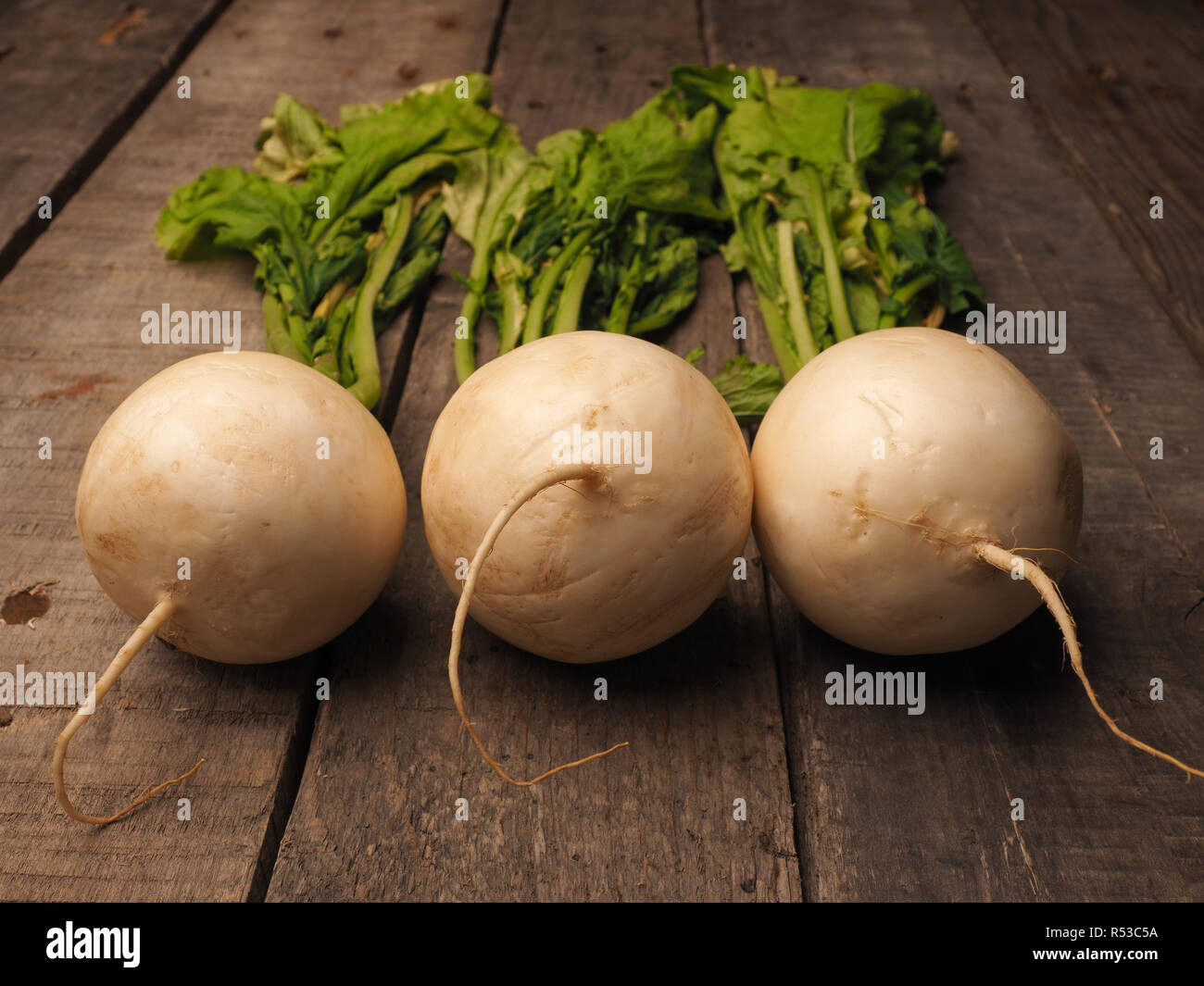 Brassica Rapa Subsp Rapa Var Majalis High Resolution Stock Photography And Images Alamy