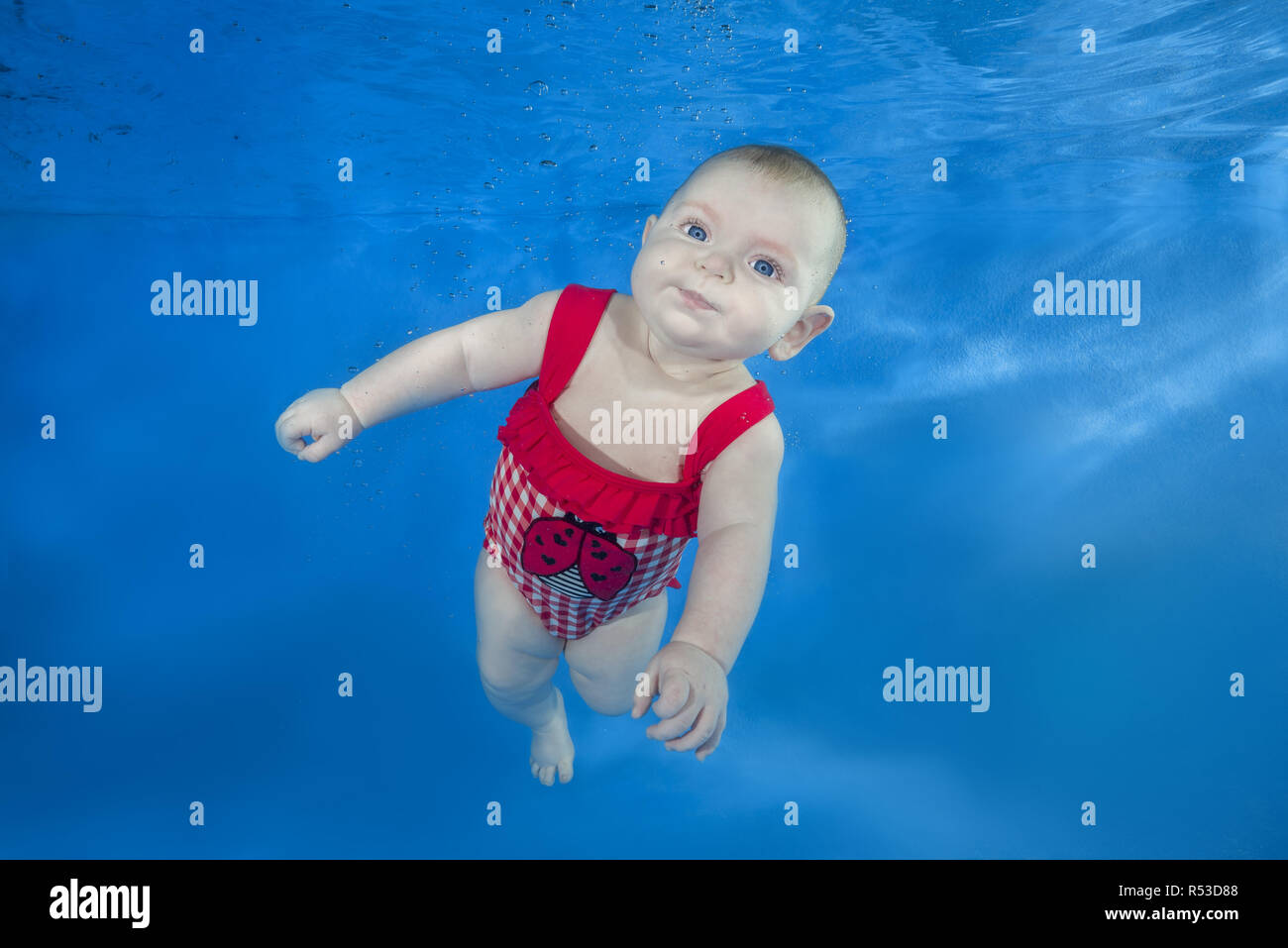 Beautiful baby girl in a red swimming suit swim underwater on blue water background. Healthy family lifestyle and children water sports activity. Chil - Stock Image