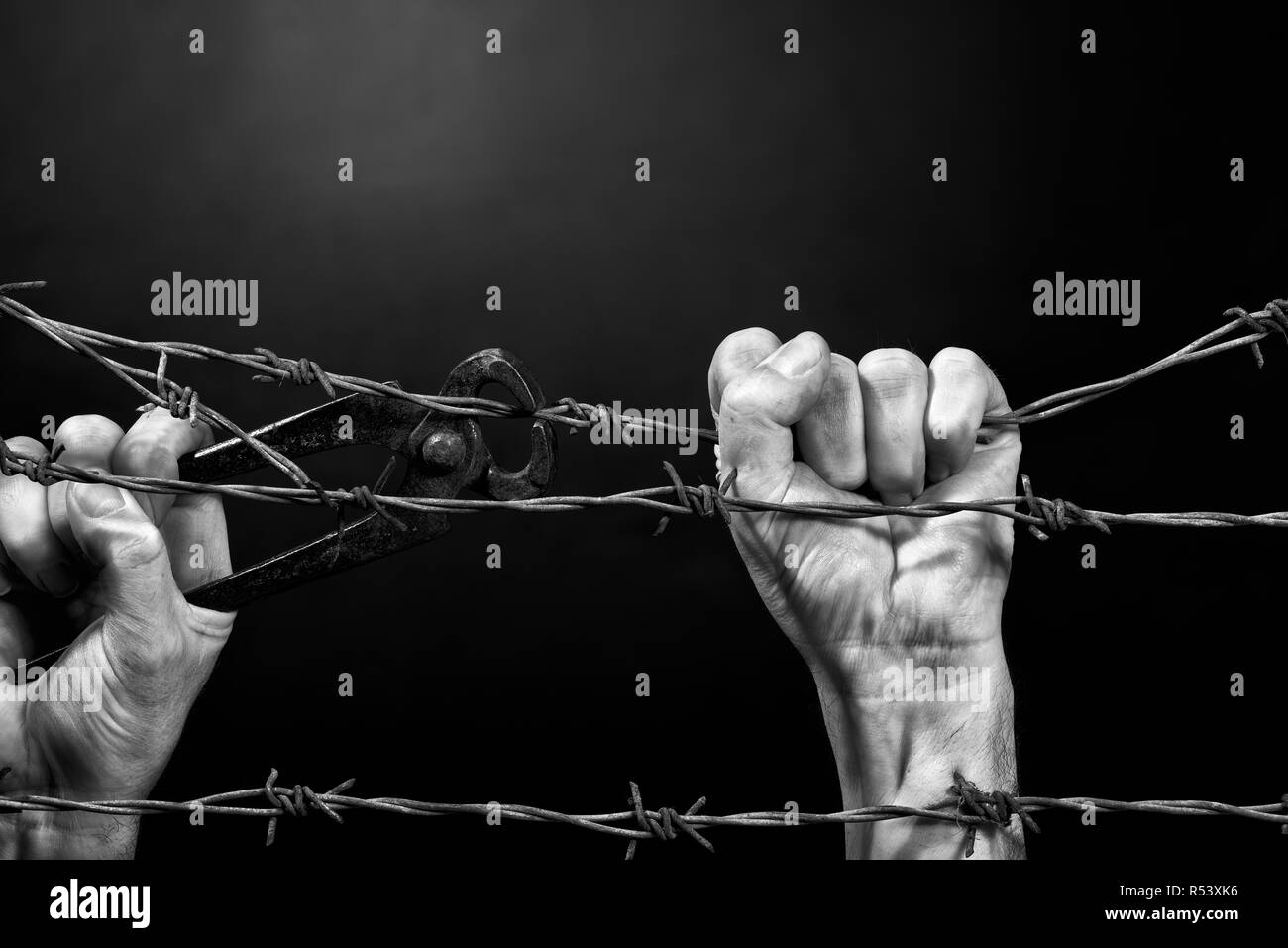 Man cuting a barbed wire fence. Black and white. - Stock Image