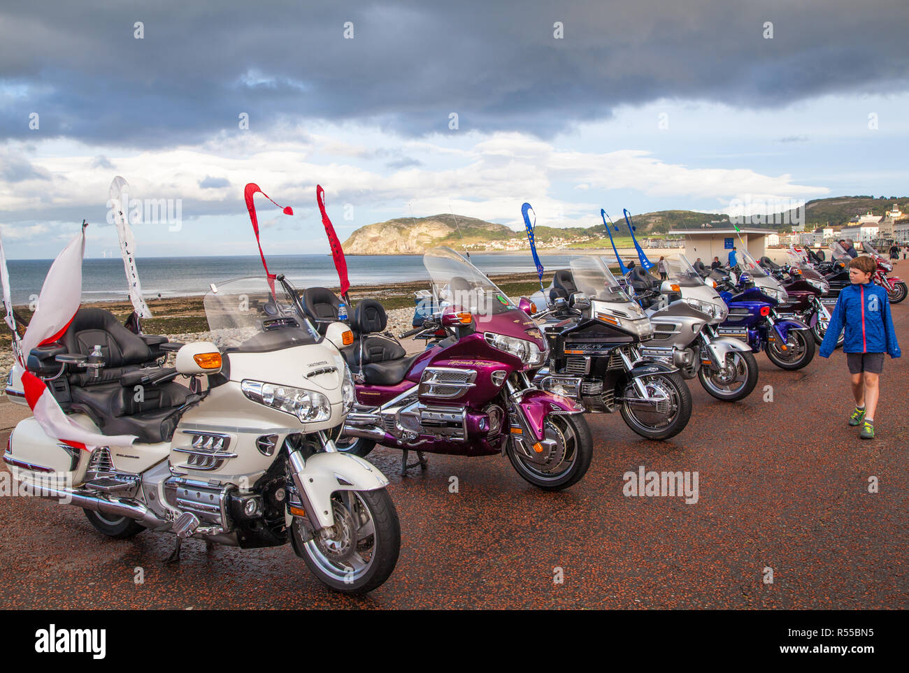 Honda Gold Wing motorcycles at an owners club rally on the