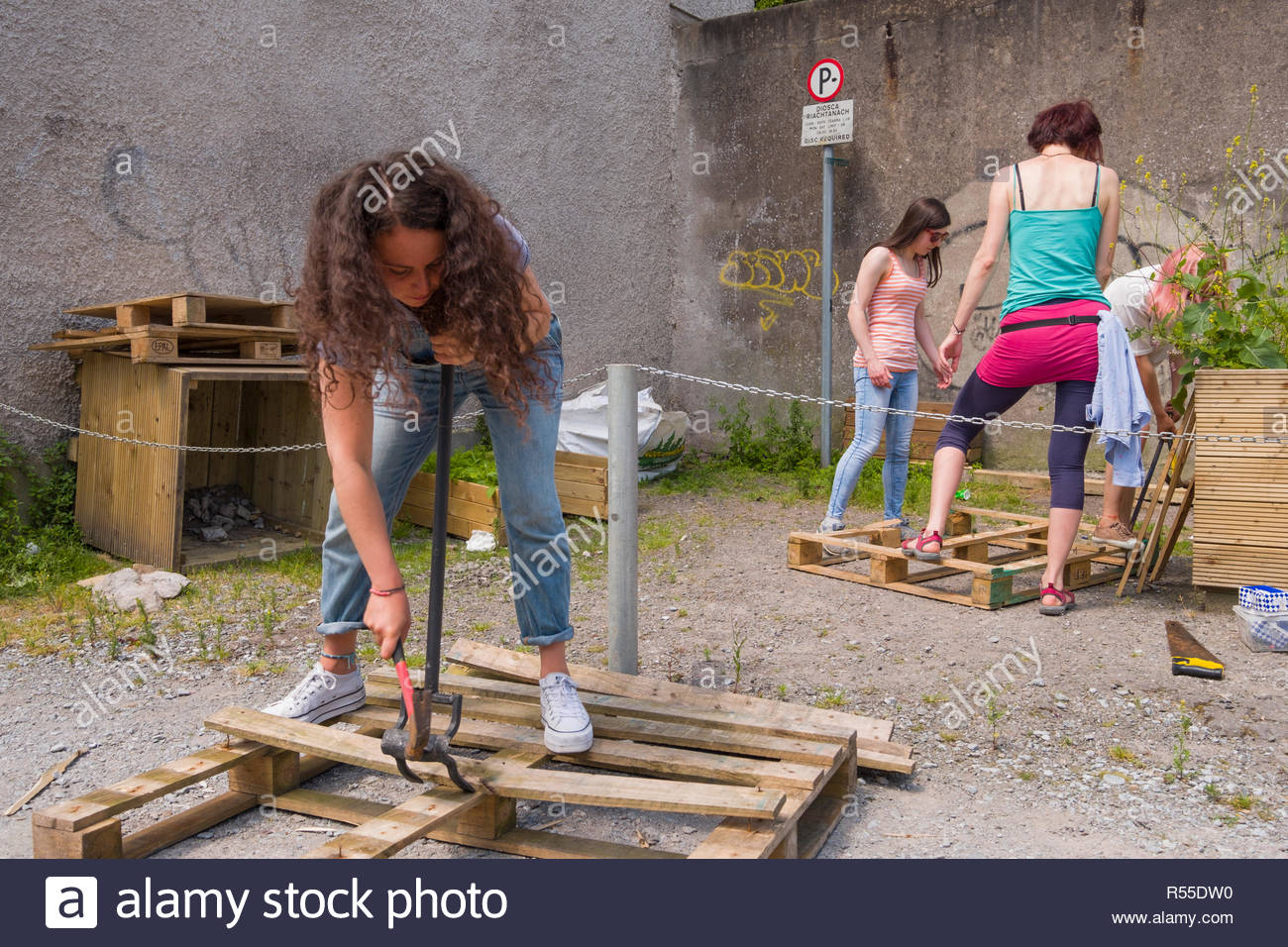 Woman using a hammer and pry bar to disassemble a wood pallet, Courtney's Avenue, Centre, Cork, County Cork, Munster, Ireland - Stock Image