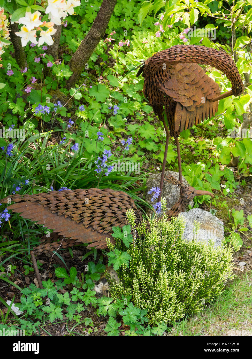 Rusted iron sculptures of two cranes in a spring  Devon garden - Stock Image