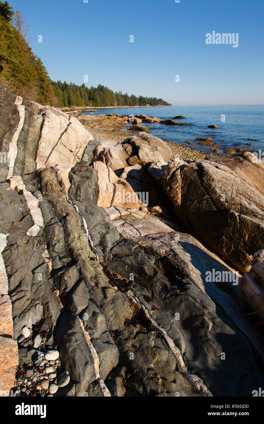 Diabase dike intrusion, Browning Beach, Sechelt, British Columbia, Canada - Stock Image