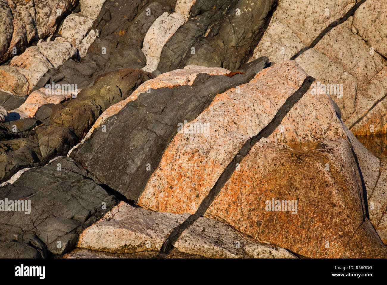 Diabase dike intrusion, Browning Beach, Sechelt, British Columbia, Canada Stock Photo
