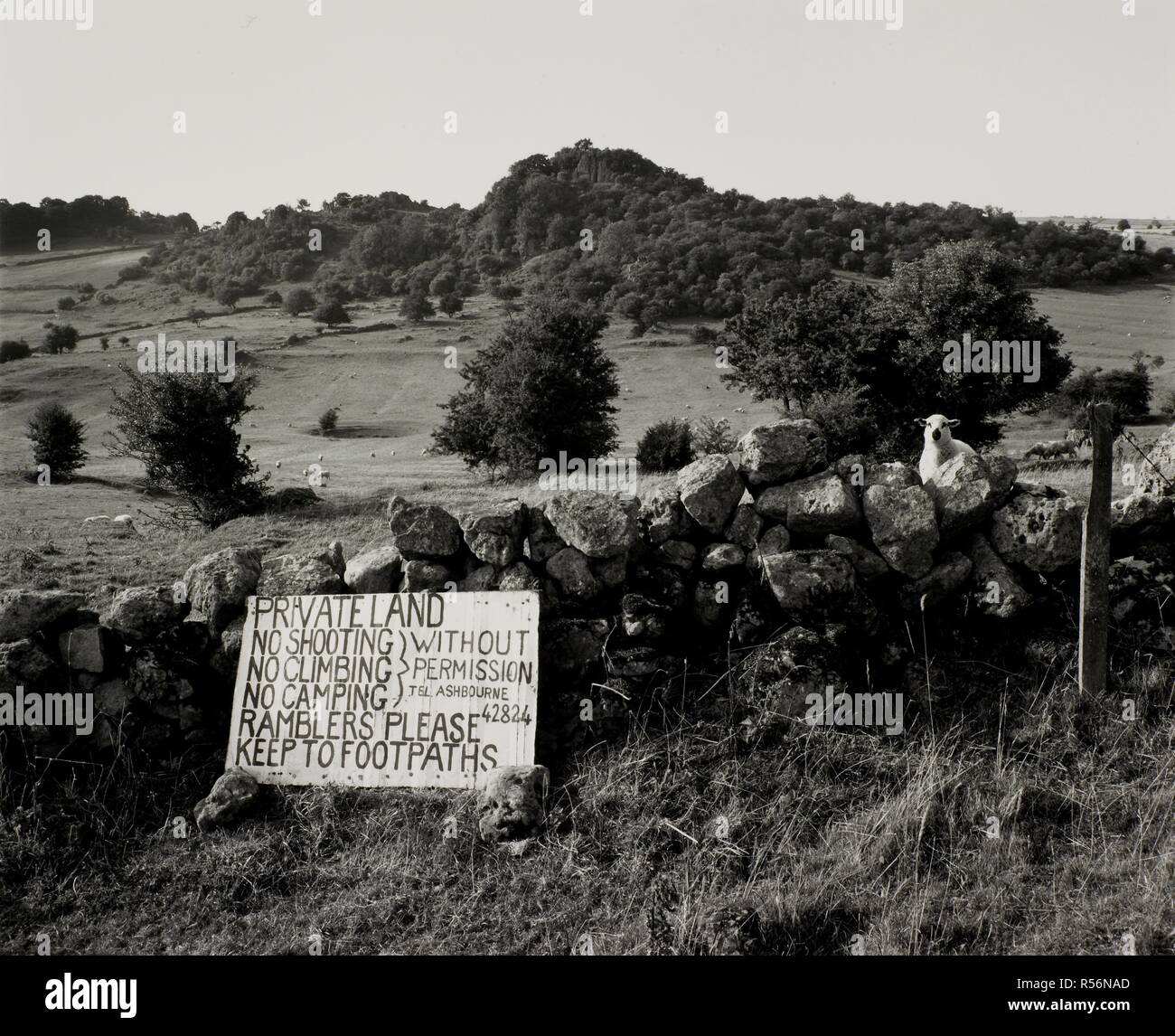 Countryside of Brassington Derbyshire. Monochrome. 1989. Our Forbidden Land Series. Source: FG176-7180-17. Author: Godwin, Fay. - Stock Image