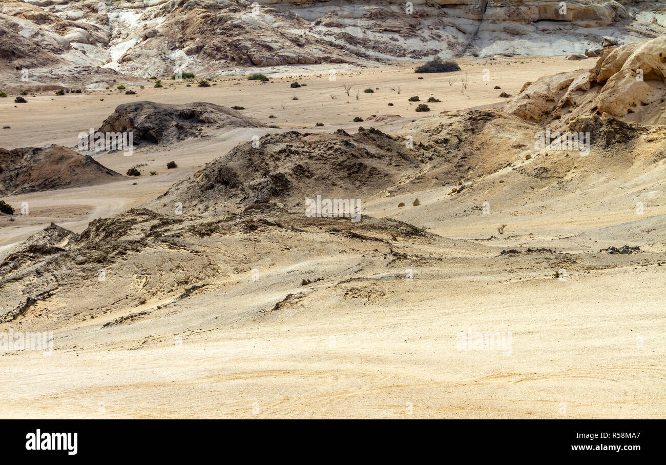 Desolation with only a few hardy plants in the arid Namib desert on the Skeleton coast of Namibia. - Stock Image