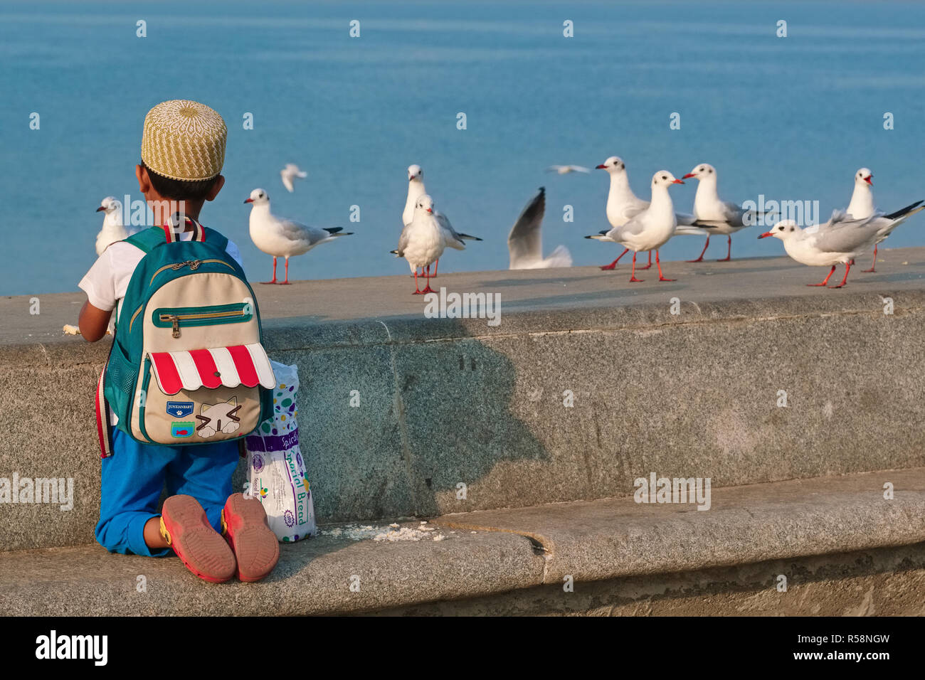 A schoolboy at Marine Drive, a boulevard by the Arabian Sea in Mumbai, India, seems fascinated by migratory seagulls spending the winter in the city - Stock Image