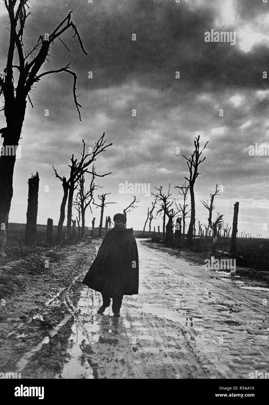 Road in France where once stood beautiful homes. Desolation along road in France where once stood beautiful homes. A refugee is looking for remains of his homestead ca. 1914-1918 - Stock Image
