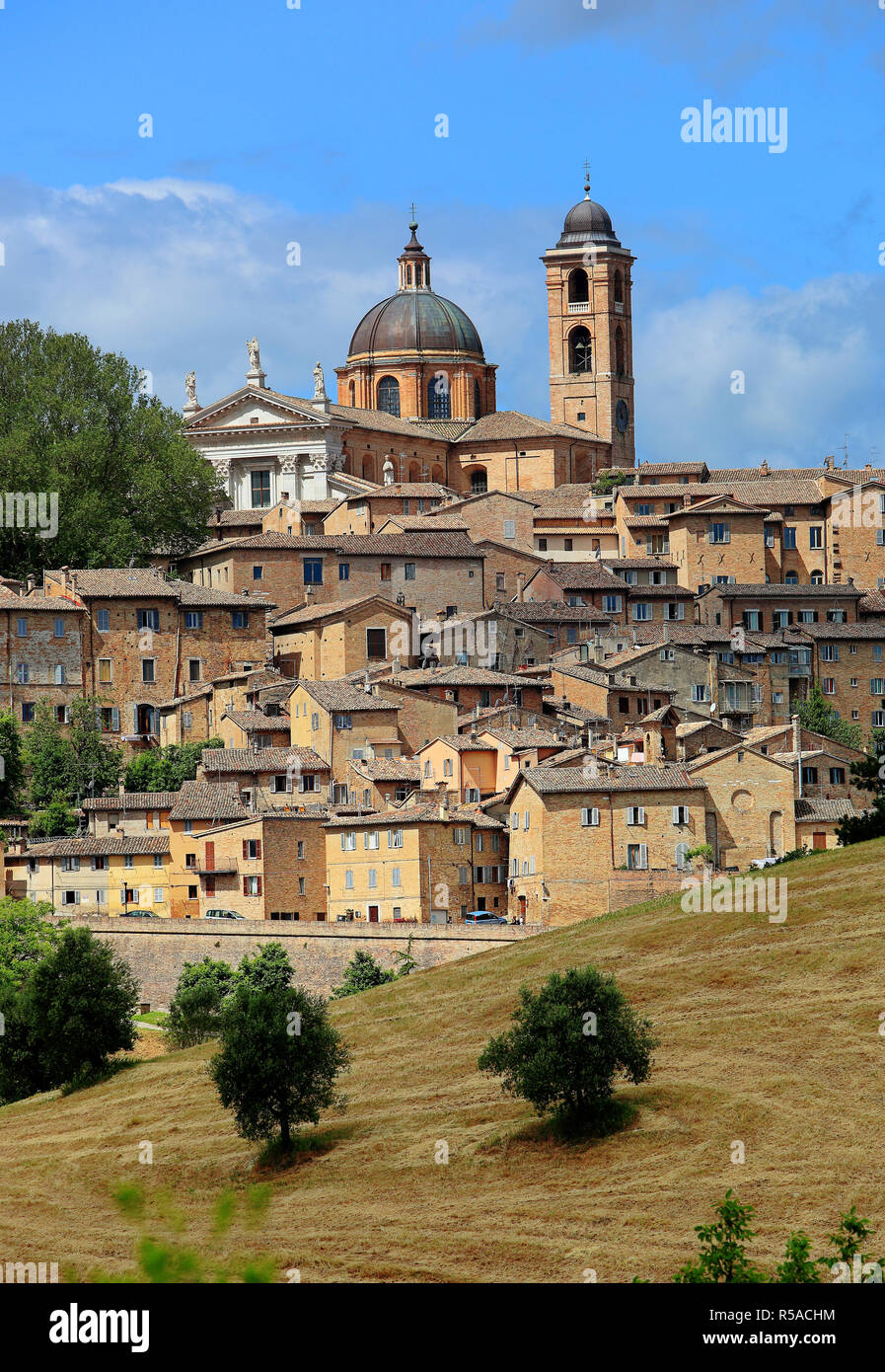 Cathedral and old town of Urbino, Marches region, Italy - Stock Image