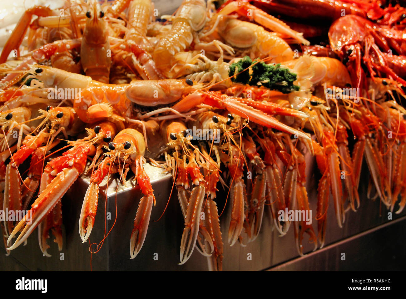 lobster - Stock Image