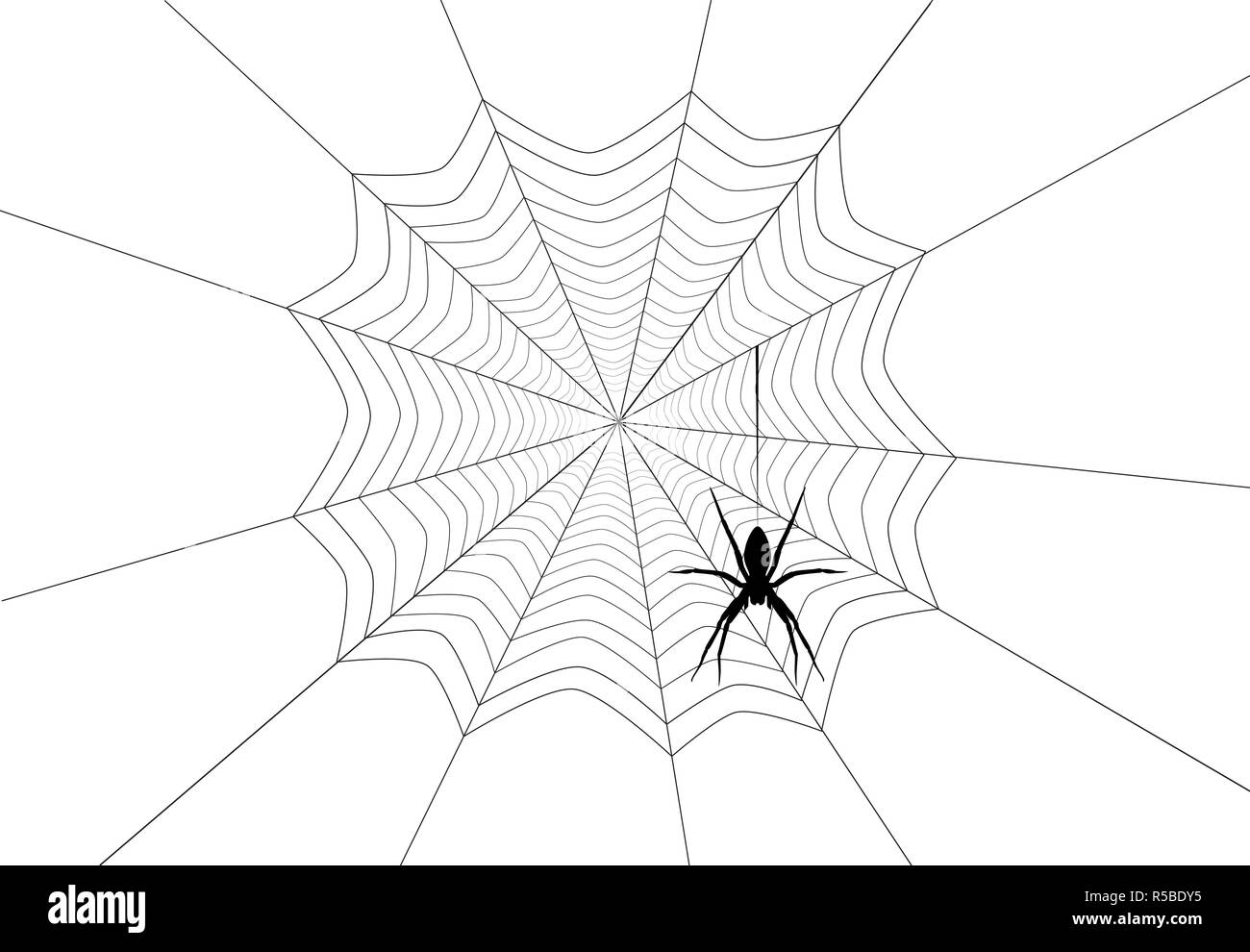 Spider Black Silhouette Hanging On Web Isolated On White