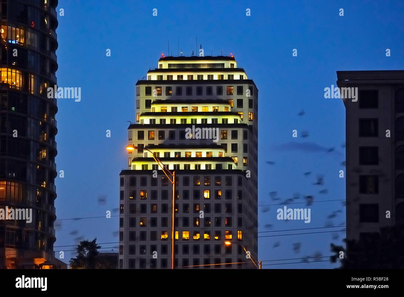 Austin high rise buildings and flocks of emerging bats, Austin, Texas, USA - Stock Image