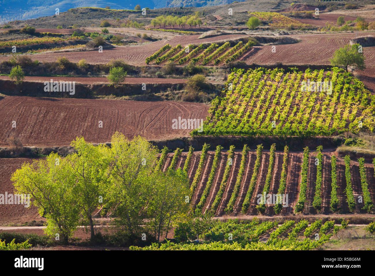 Adult Guide in La Rioja