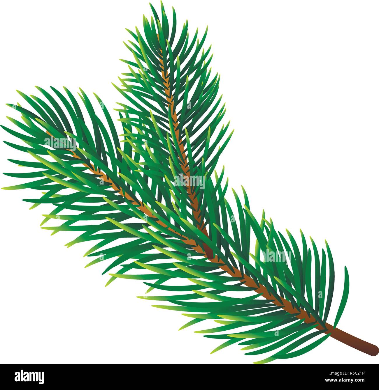 Pine tree branch icon. Realistic illustration of pine tree branch vector icon for web design isolated on white background - Stock Vector
