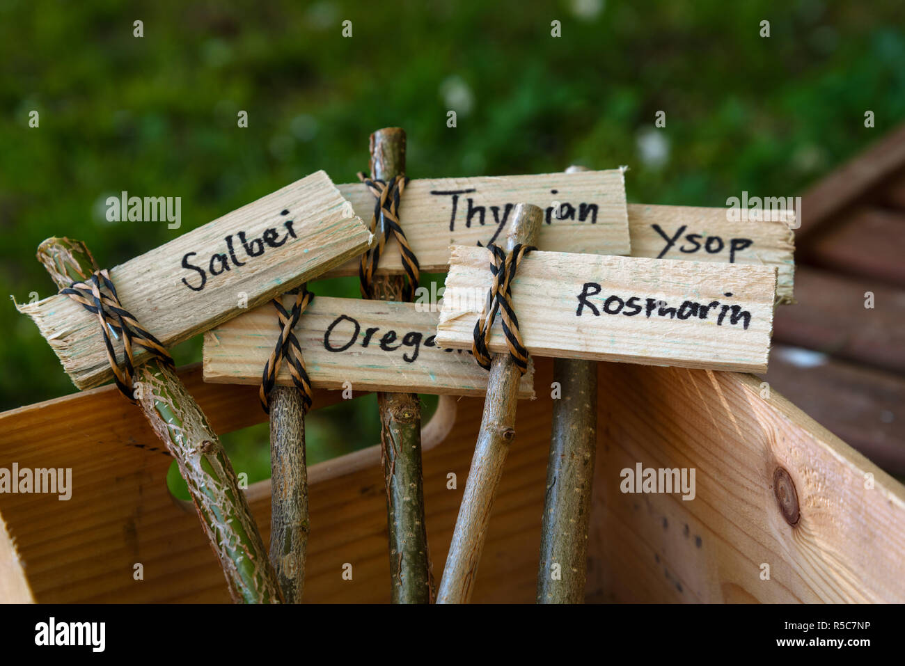 creative wooden plant markers, labeled with german names for sage