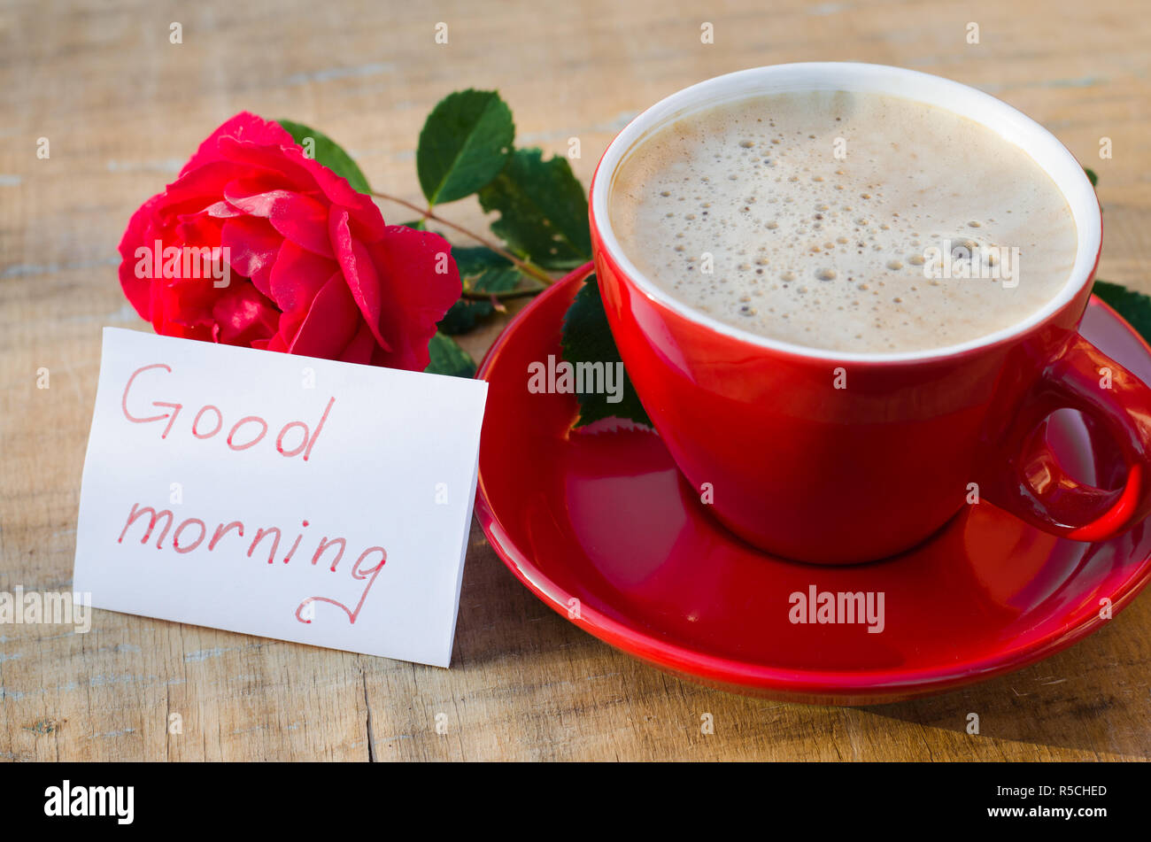 Coffee Flower Good Morning Stock Photos Coffee Flower Good Morning