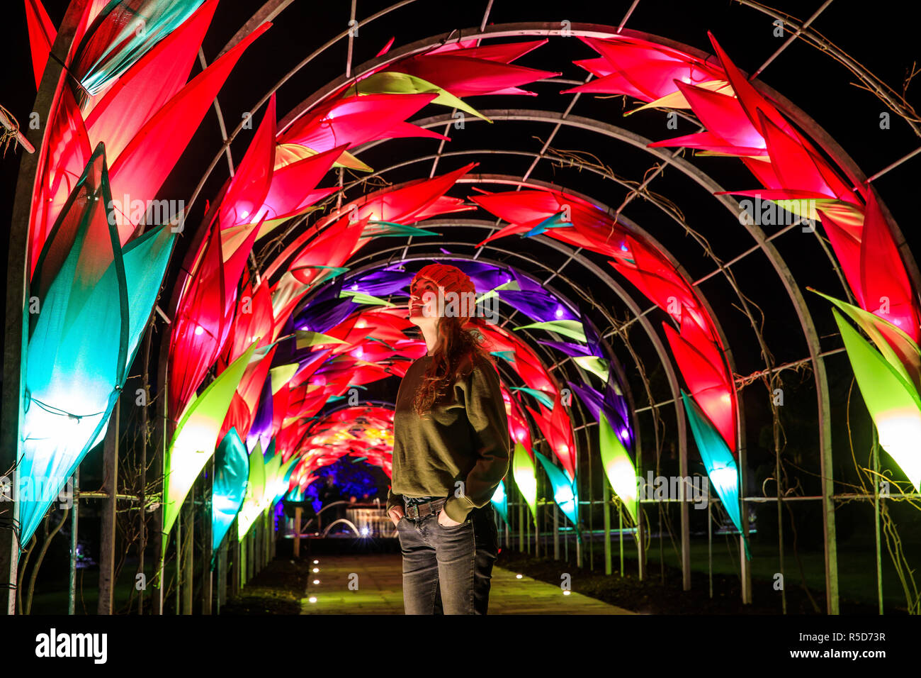 Wisley, Surrey, UK, 30 November 2018.  30th November 2018. Naomi Trenier, 31 from Surrey pictured admiring the display over the the new Wisteria Walkway.  The daily light installations returns to Wisley from 1 December until Wednesday 2 January 2019 from 4pm - 8pm.  Back for its fourth year, Christmas Glow guides visitors around a new route for 2018, taking in locations including the Rock Garden, the Seven Acres lake and the Jellicoe Canal. Credit: Oliver Dixon/Alamy Live News - Stock Image