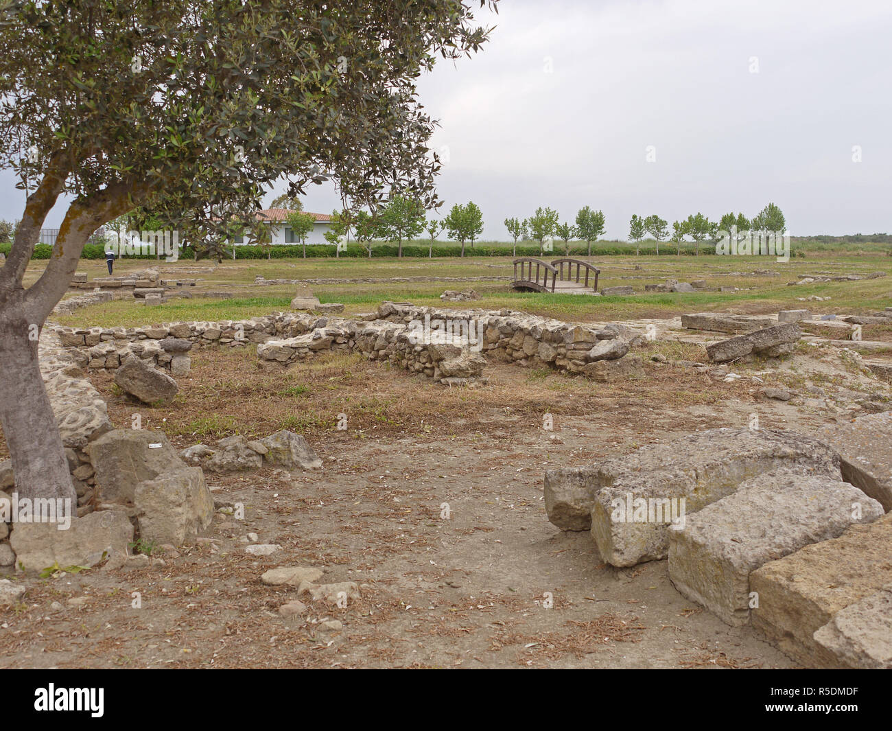 Remains of an ancient Greek town in the Metaponto Archaeological Park, Province of Matera, Italy Stock Photo